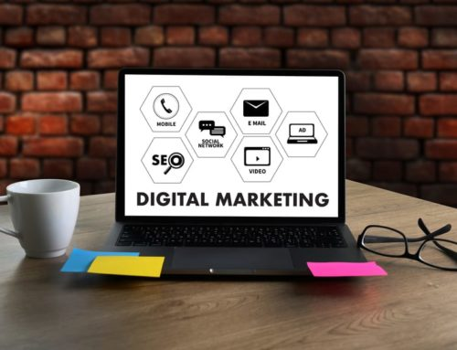 Small Business Owners and Digital Marketing